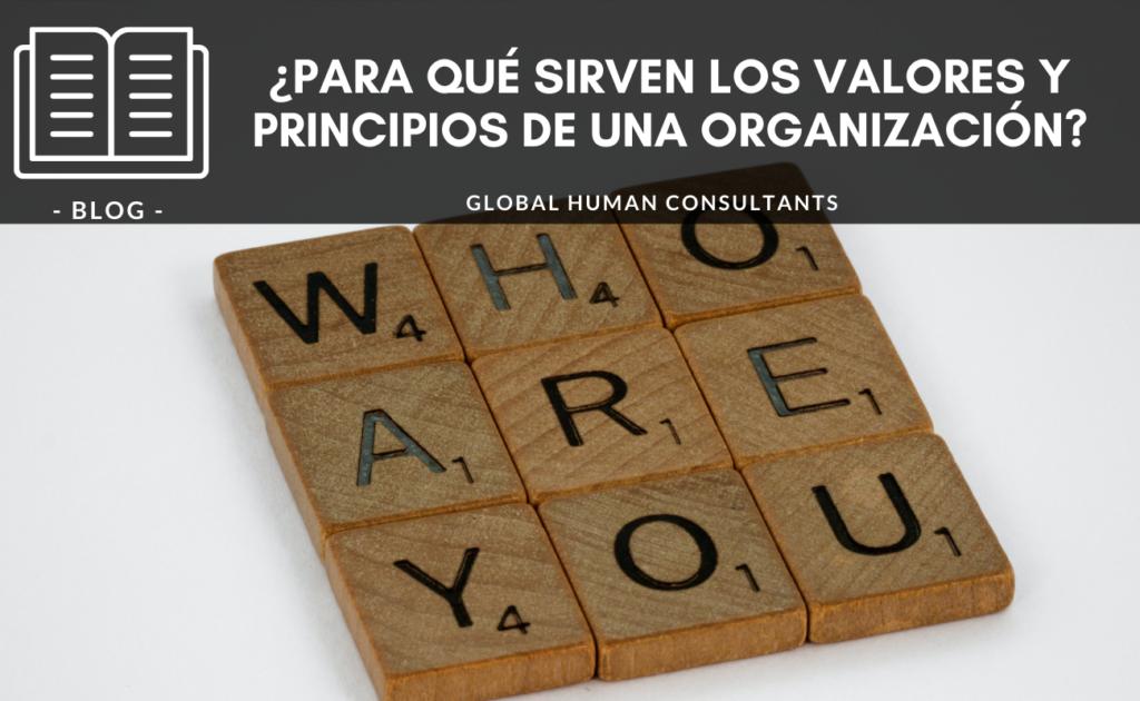 ¿Para qué sirven los valores y principios de una organización?